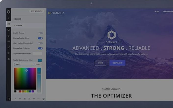 Wordpress Theme optimizer Pro